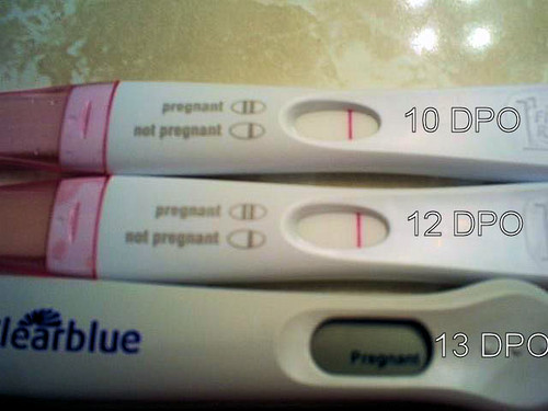 12 Dpo Negative Still Pregnant Related Keywords Suggestions 12