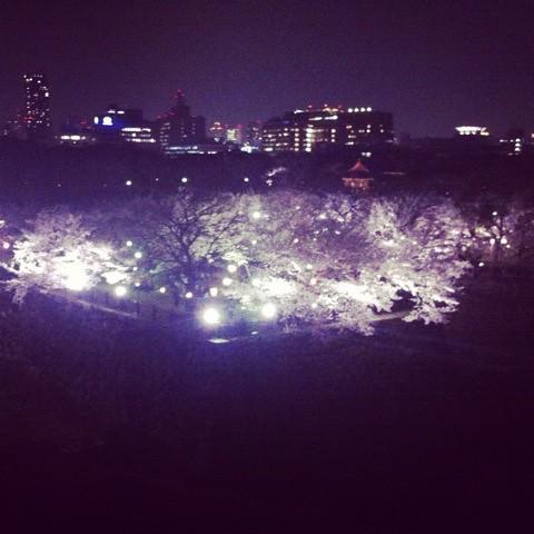 夜の大阪城公園