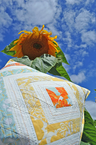 sunflower and pillow