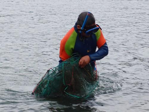 淨海結果發現海中有許多幽靈漁網。