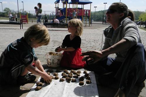 making seed balls