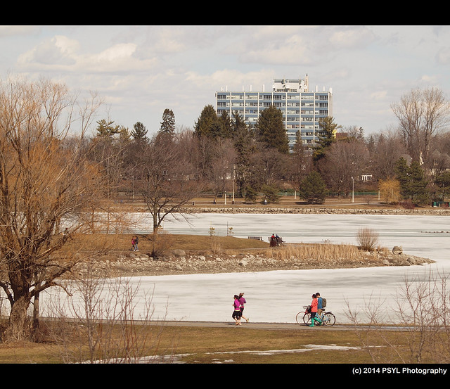 Ottawa citizens enjoying warm Spring