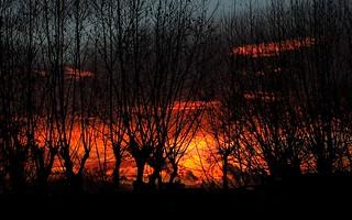 Nuit de feu...  Night Fire... #Darktable #FujiX-S1