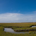 Small photo of Amelia Island Marshes