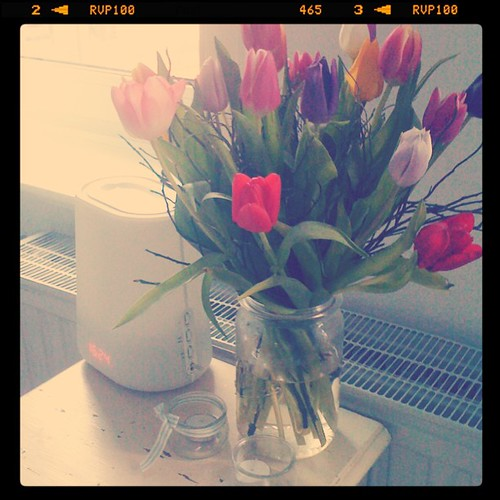 Pre-Valentine flowers