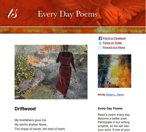Every Day Poems Driftwood