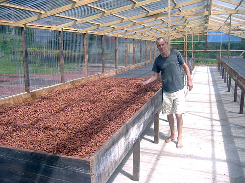 new solar cocoa-drier