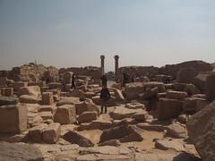 Mortuary Temple of Sahure (IV)