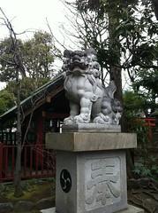狛犬探訪 徳持神社