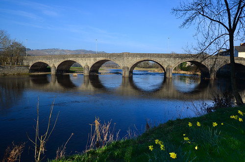 bridge reflection water stone wales architecture river sunny daffodils wye builthwells nikond5100