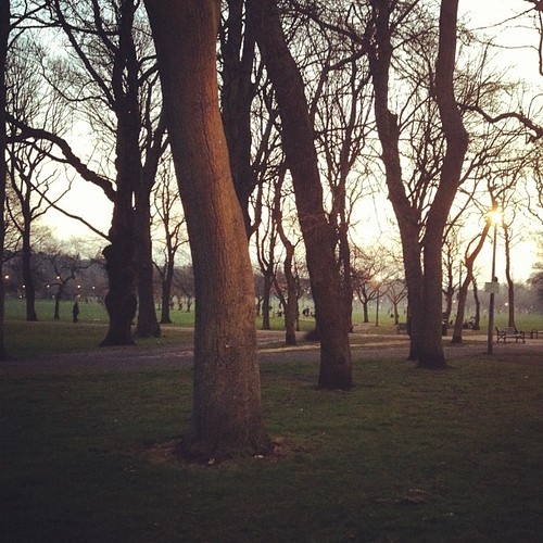 Day 120 of Project 365: Meadows