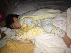寝てます(2012/3/23)