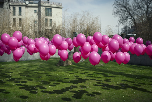 Balloons floating above grass