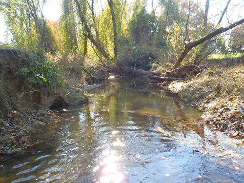 Photo set of Batchellors Run Stream Restoration