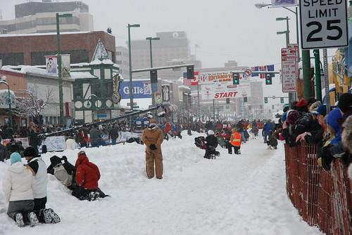 Iditarod 083