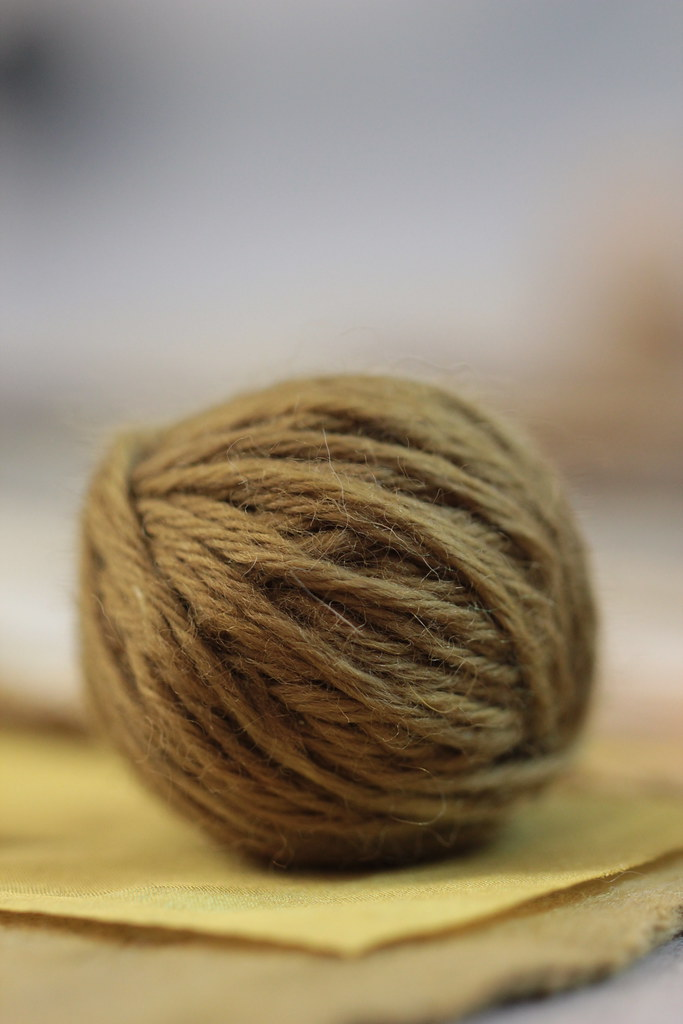 (hot) dyed with hedera helix