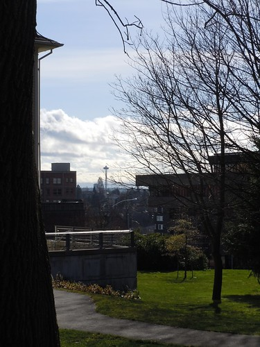 A Glimpse of the Space Needle from Campus