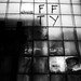 FFTY by Kyle J Schultz