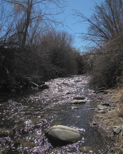 creek backyard ranchosdetaos