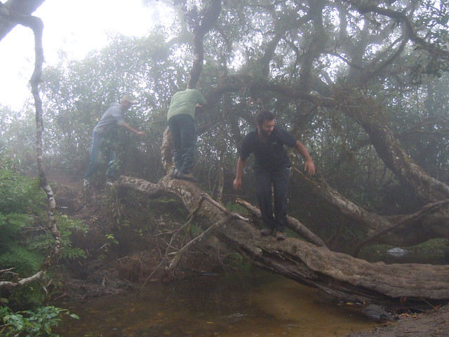 Brahmagiri_Trek_Water_Crossing2