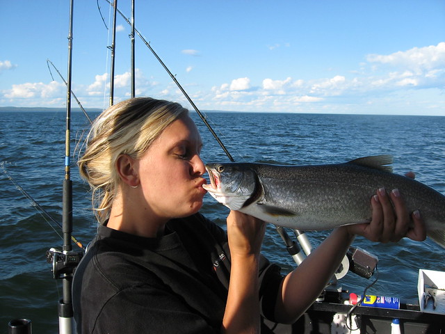 Img 2360 for Fish in lake superior