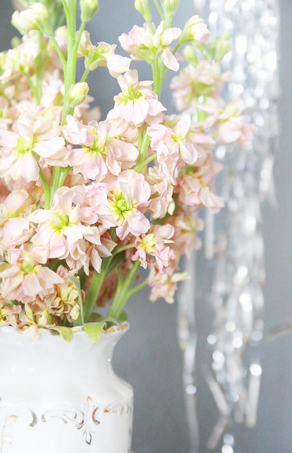 valentine florals