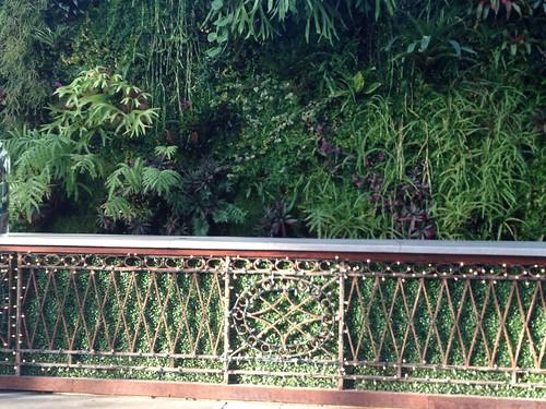 living wall planterra