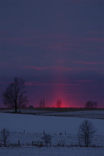 trees winter sunset sky snow ontario evening photo glow quiet farmland february