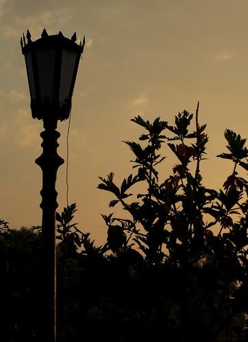sunrise gaslamp
