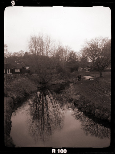 fishing in the river Wey by pho-Tony