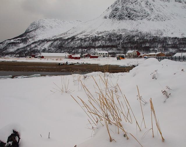 Oldervik