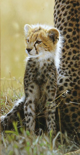 "'Close to Mum' oil on board 17¼"" x 9"