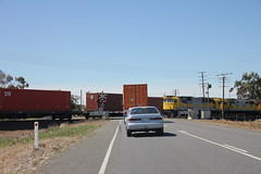 Train blocking the road