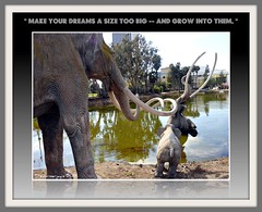 Lacma Pre-historic backyard..comes back to LIFE.!?