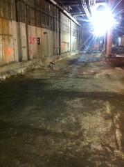 CM014A - Completed Track Bed Demolition at Track 125 (03-13-2012)