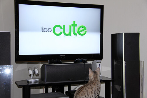 WatchingTooCute07