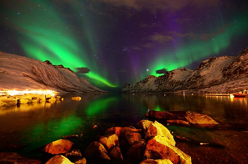Aurora Borealis- side by side in Ersfjordbotn