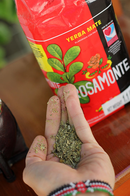 Digging my hand into the yerba mate leaves