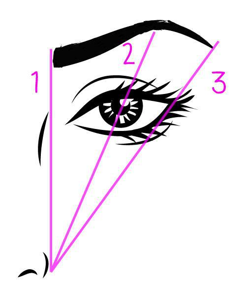 eyebrow-tips