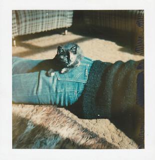 Suzy, Summer 1980