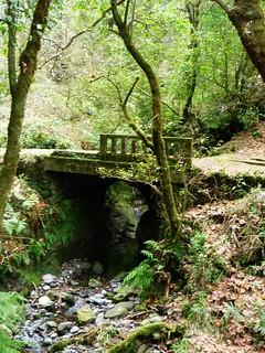 Im Hinterland von Machico, Canical und Santa Cruz wandern