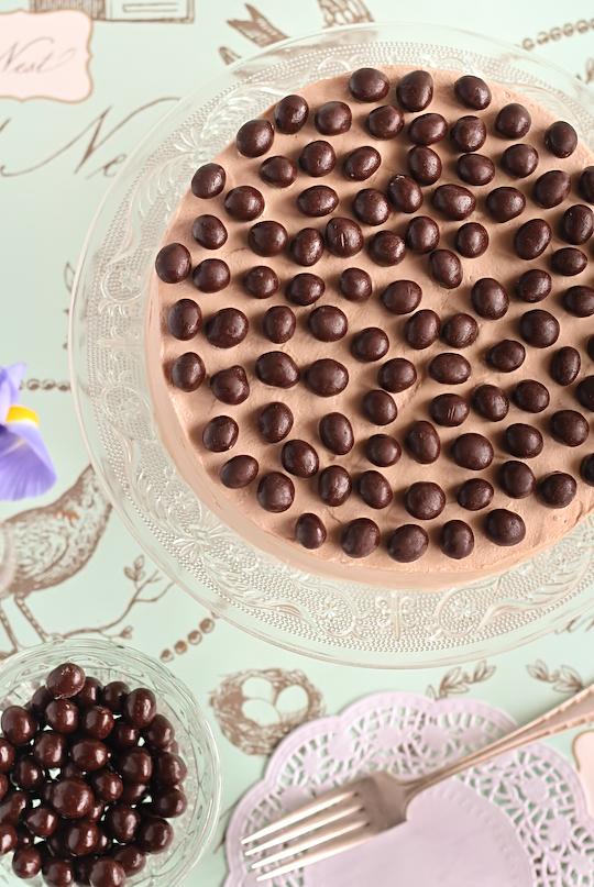 mocha_marble_cake-4