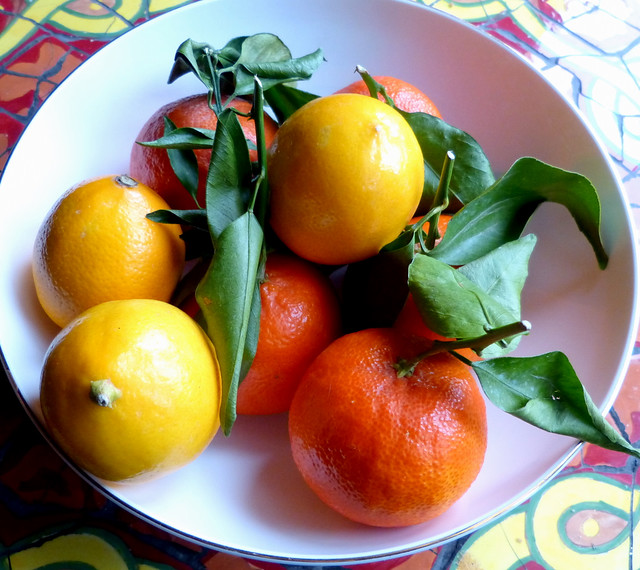 Bowl Of Meyer Lemons And Mandarins