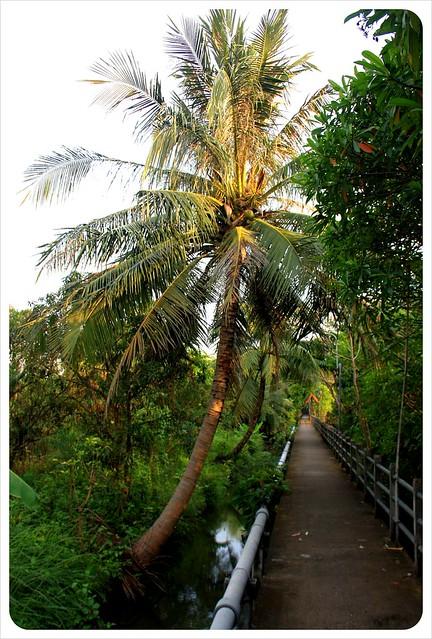 bangkok water & path bang namphueng