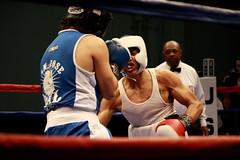 professional boxing, championship, individual sports, contact sport, sports, combat sport, muscle, kickboxing, sanshou, amateur boxing, boxing, athlete, tournament,