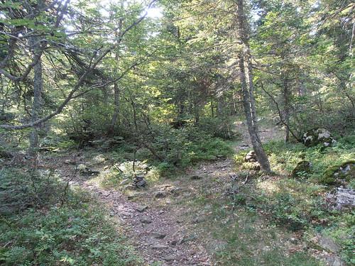 moundeilhs -septembre 2011 020