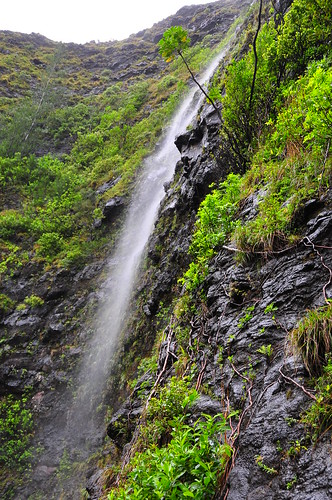 Waipuhia Falls
