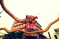 dragon, illustration, amusement ride,