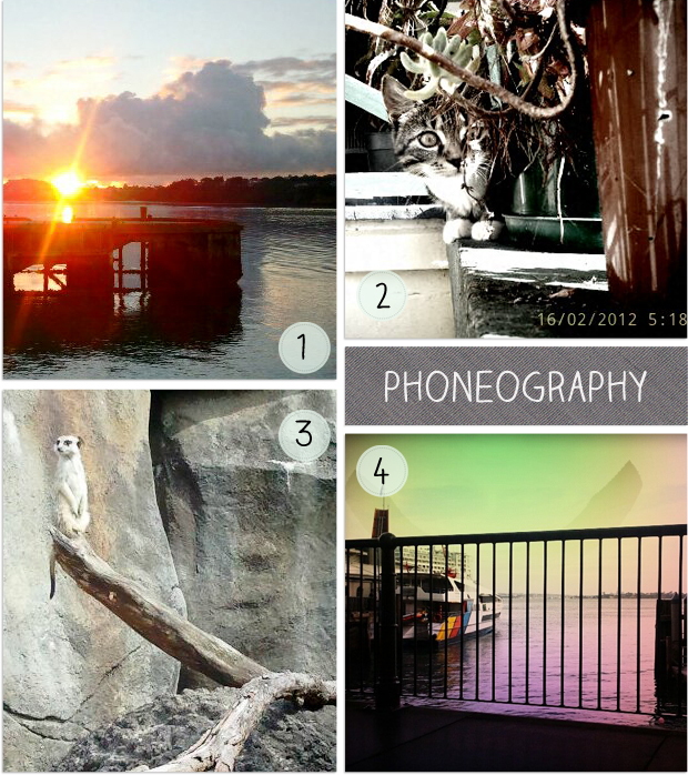 Phoneography