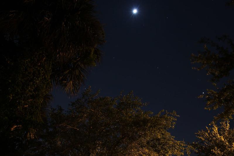 driveway stargazing